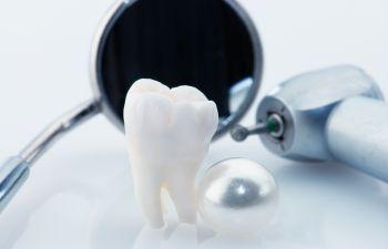 Teeth Model Marietta GA